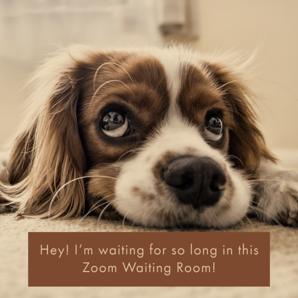 Zoom Waiting Room